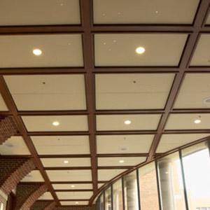 decorative acoustical ceiling tiles. Acoustical Ceilings  Decorative Drop Tripodi